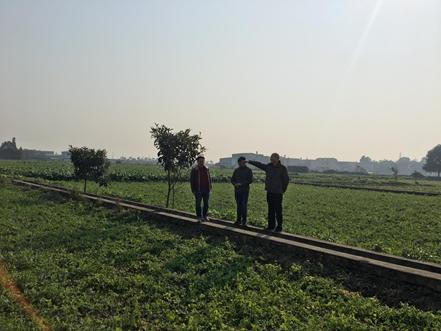 东哲科技助力广汉农业局建设可扩展、全兼容的实效性溯源体系插图6